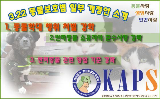 동물보호법개정.jpg