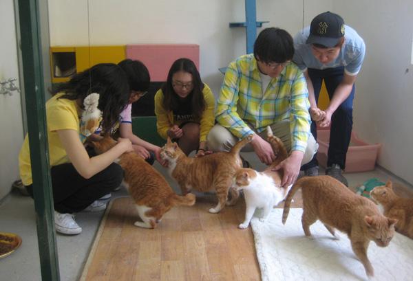 0514_boeun_volunteer005.jpg